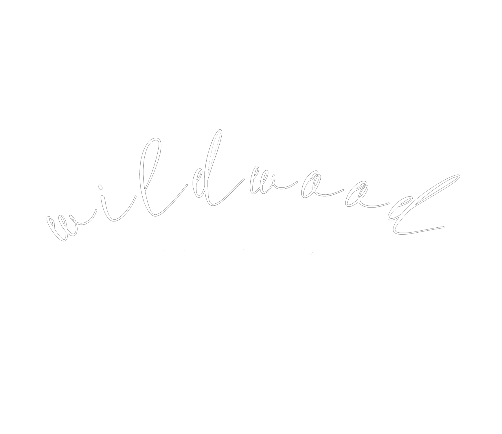 Wildwood Media Company
